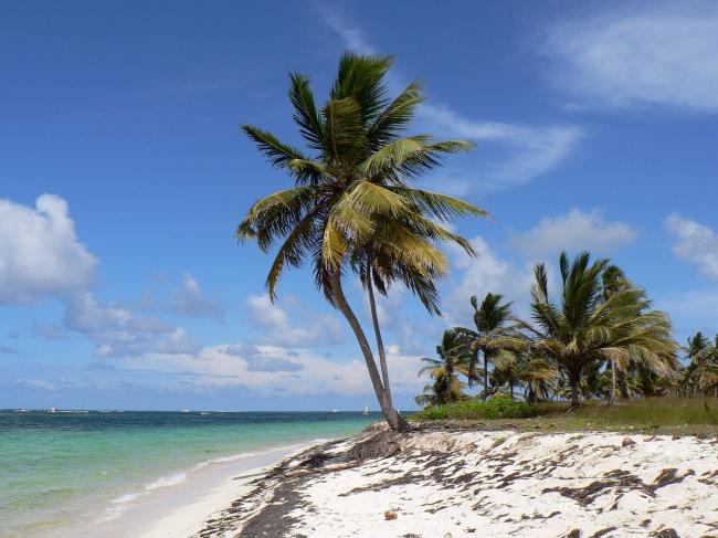 Punta Cana Preventa 2020 - 13 días
