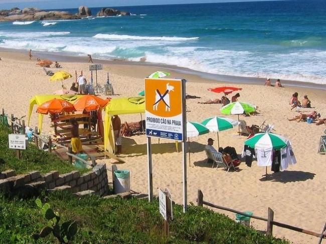 Brasil - Florianopolis - 07, 14 y 21 Enero
