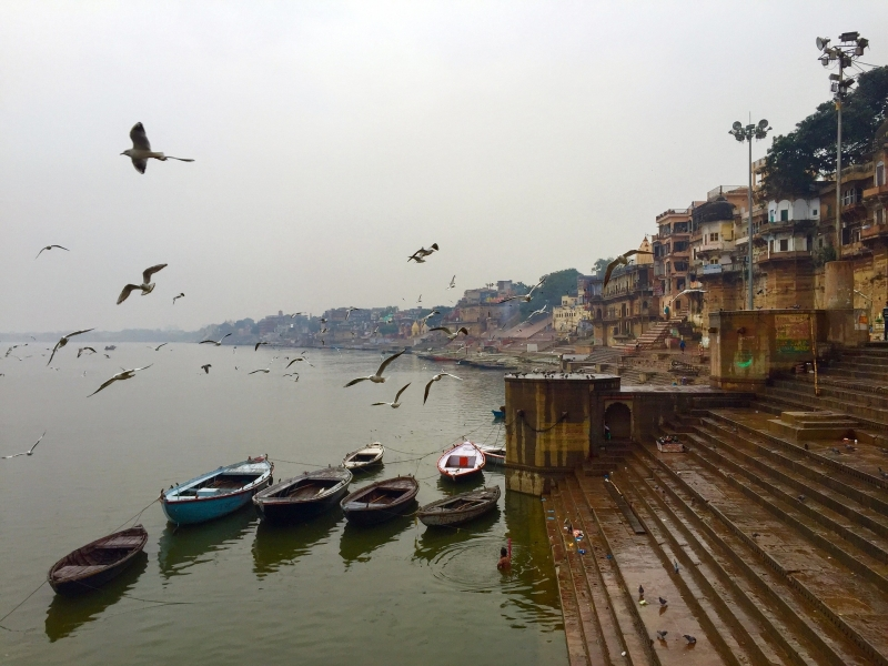 INDIA: TRIANGULO DORADO Y GANGES (con Guía Acompañante en Español en Delhi, Jaipur y Agra)